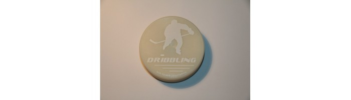 Off-ice puck white 170gr